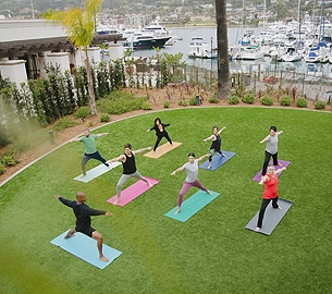 A group of people doing yoga in the grass